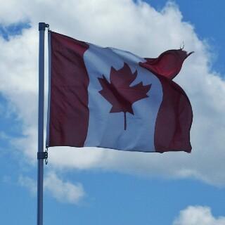 Kanadaren bandera.